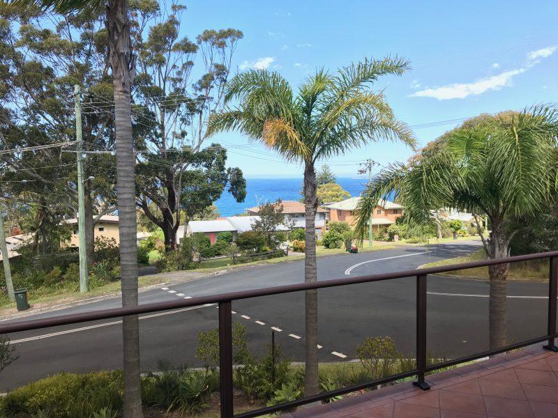 Argía, Jervis Bay : image